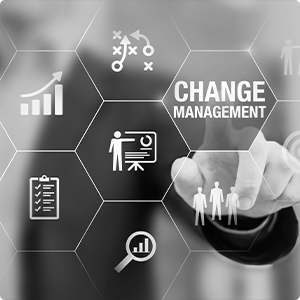 Change-Management BW